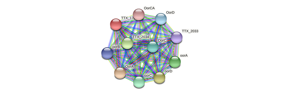 TTX_1786 protein (Thermoproteus tenax) - STRING interaction network