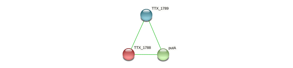 TTX_1788 protein (Thermoproteus tenax) - STRING interaction network
