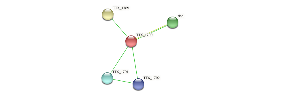 TTX_1790 protein (Thermoproteus tenax) - STRING interaction network
