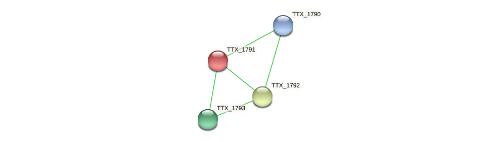 TTX_1791 protein (Thermoproteus tenax) - STRING interaction network