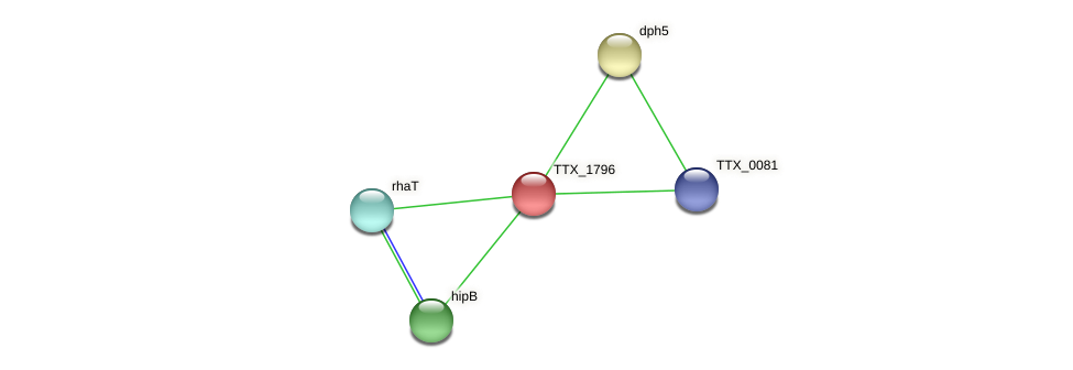 TTX_1796 protein (Thermoproteus tenax) - STRING interaction network
