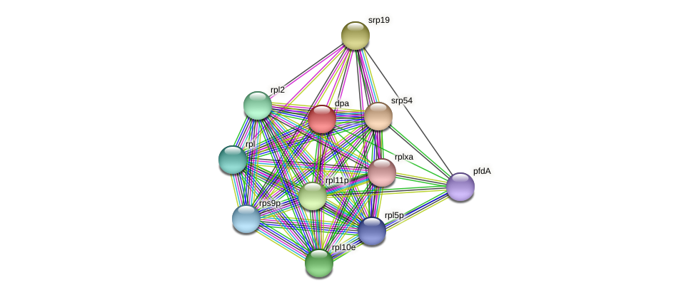 dpa protein (Thermoproteus tenax) - STRING interaction network