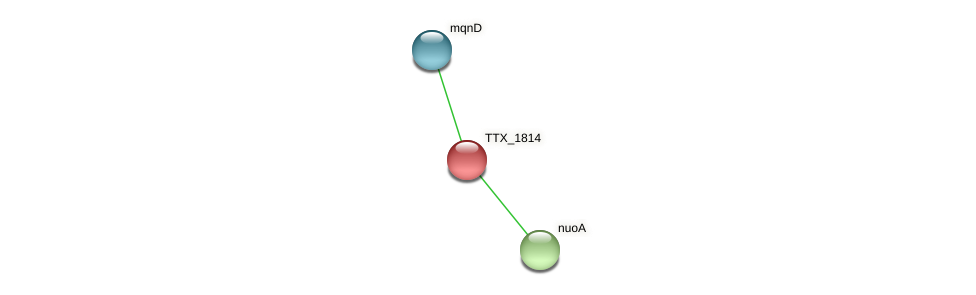 TTX_1814 protein (Thermoproteus tenax) - STRING interaction network