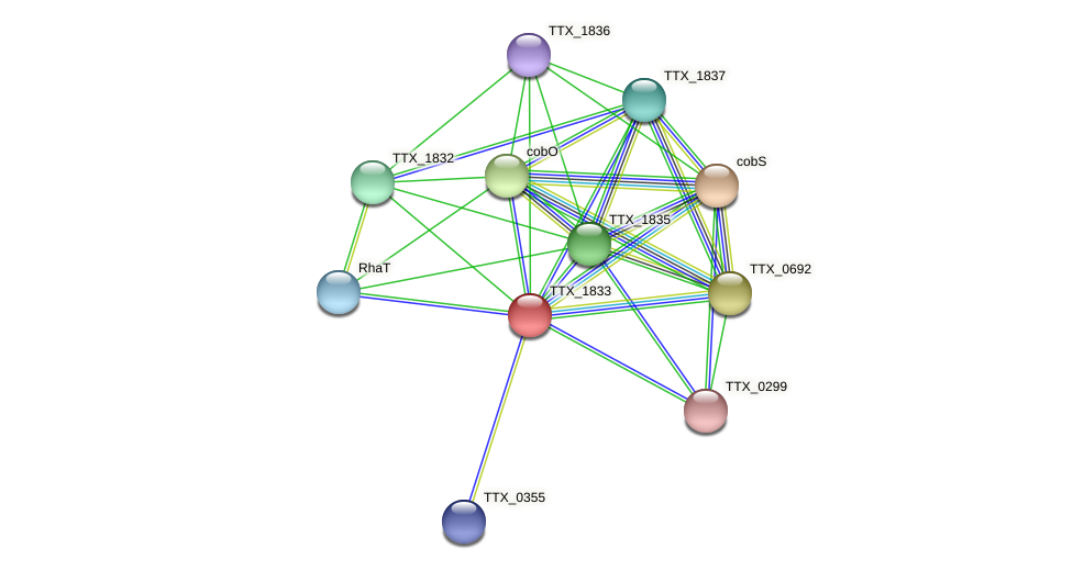 TTX_1833 protein (Thermoproteus tenax) - STRING interaction network