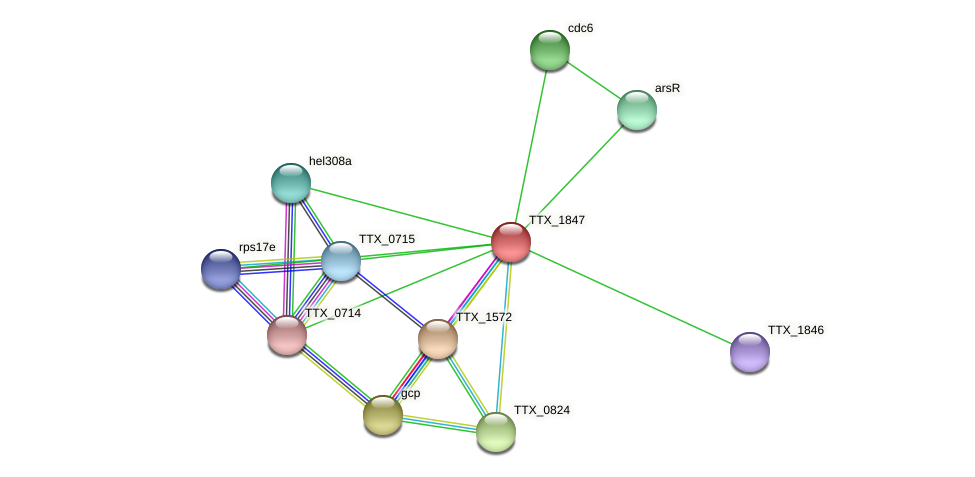 TTX_1847 protein (Thermoproteus tenax) - STRING interaction network