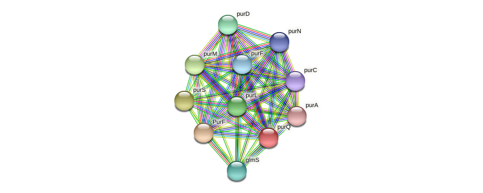 purQ protein (Thermoproteus tenax) - STRING interaction network
