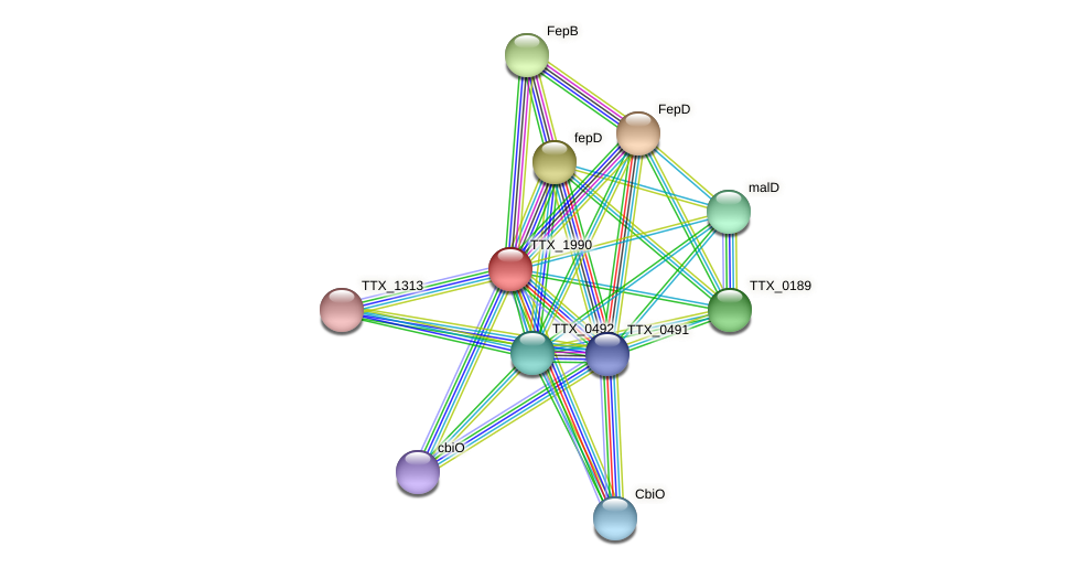 TTX_1990 protein (Thermoproteus tenax) - STRING interaction network