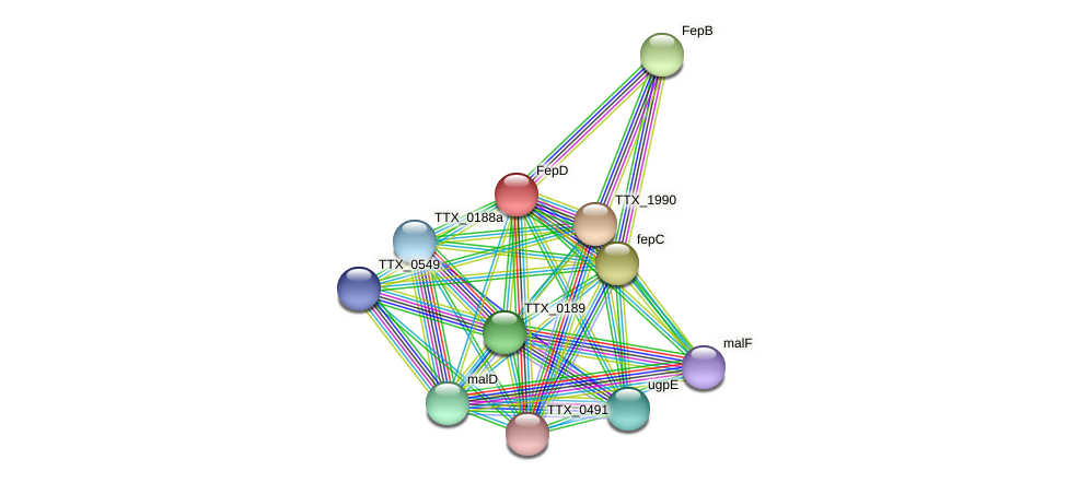 TTX_1991 protein (Thermoproteus tenax) - STRING interaction network