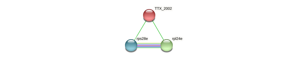 TTX_2002 protein (Thermoproteus tenax) - STRING interaction network