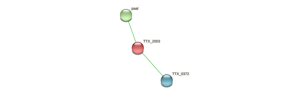 TTX_2003 protein (Thermoproteus tenax) - STRING interaction network
