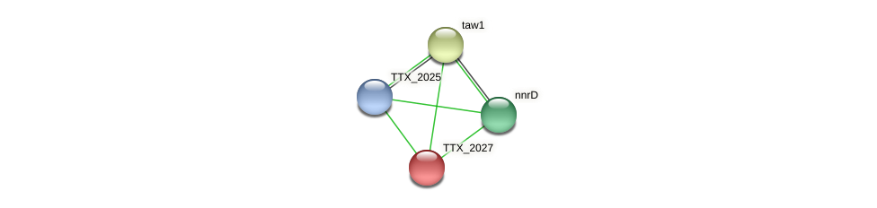 TTX_2027 protein (Thermoproteus tenax) - STRING interaction network