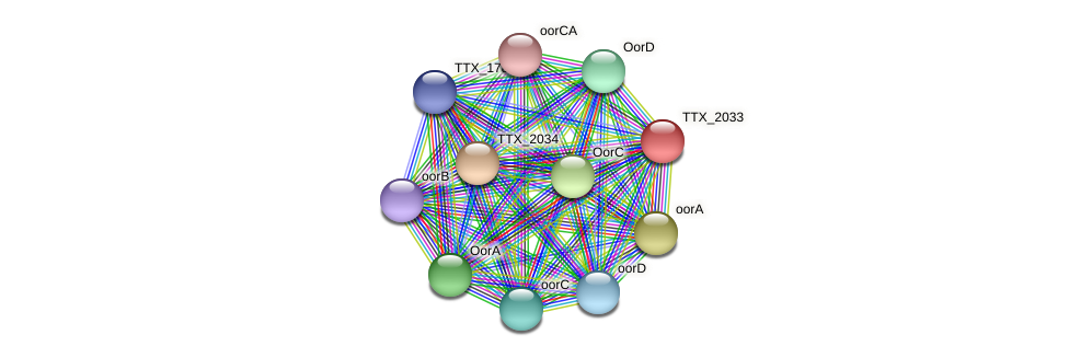 TTX_2033 protein (Thermoproteus tenax) - STRING interaction network