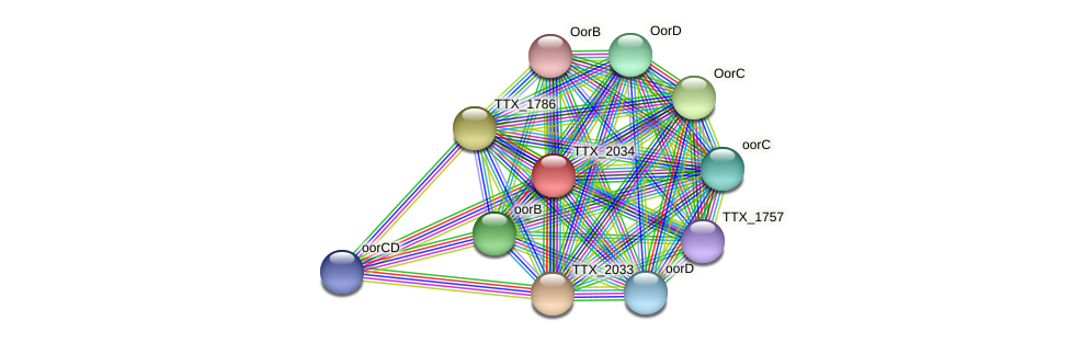 TTX_2034 protein (Thermoproteus tenax) - STRING interaction network