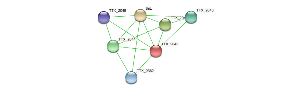 TTX_2043 protein (Thermoproteus tenax) - STRING interaction network