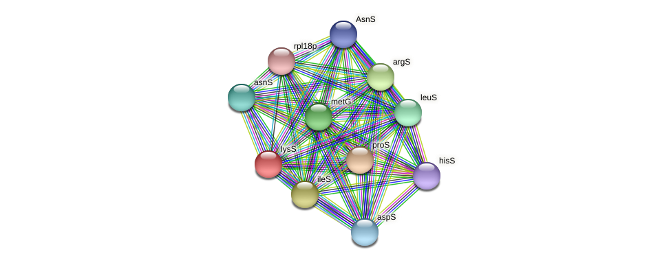 lysS protein (Thermoproteus tenax) - STRING interaction network