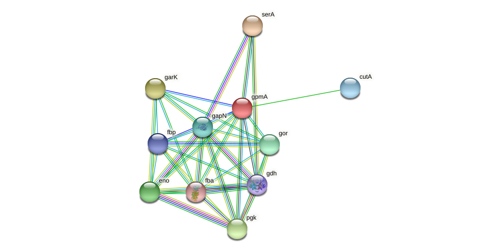 apgM protein (Thermoproteus tenax) - STRING interaction network