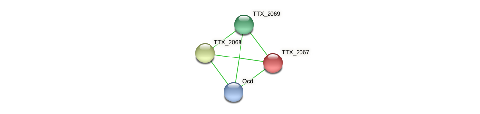 TTX_2067 protein (Thermoproteus tenax) - STRING interaction network