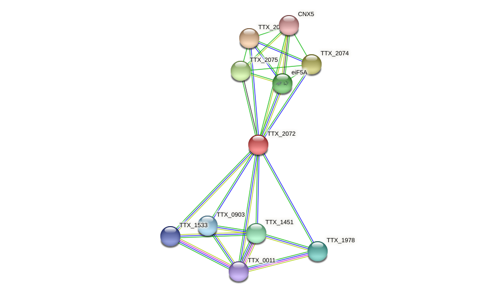 TTX_2072 protein (Thermoproteus tenax) - STRING interaction network