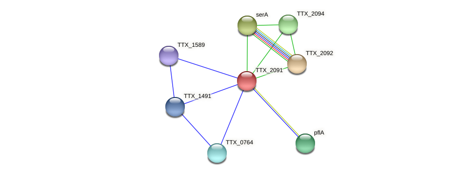TTX_2091 protein (Thermoproteus tenax) - STRING interaction network