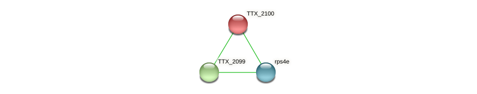 TTX_2100 protein (Thermoproteus tenax) - STRING interaction network