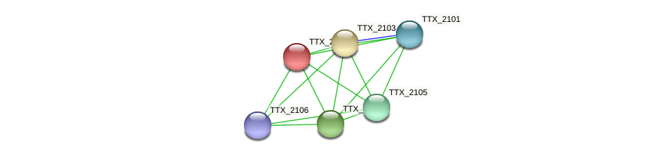 TTX_2102 protein (Thermoproteus tenax) - STRING interaction network