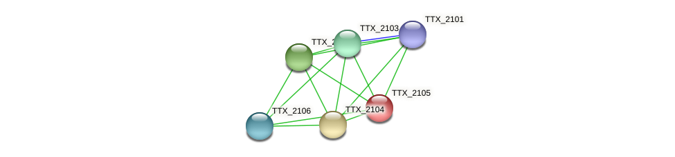 TTX_2105 protein (Thermoproteus tenax) - STRING interaction network