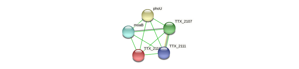 TTX_2110 protein (Thermoproteus tenax) - STRING interaction network