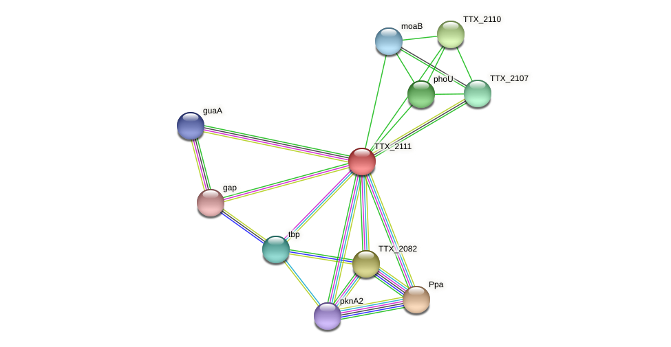 TTX_2111 protein (Thermoproteus tenax) - STRING interaction network