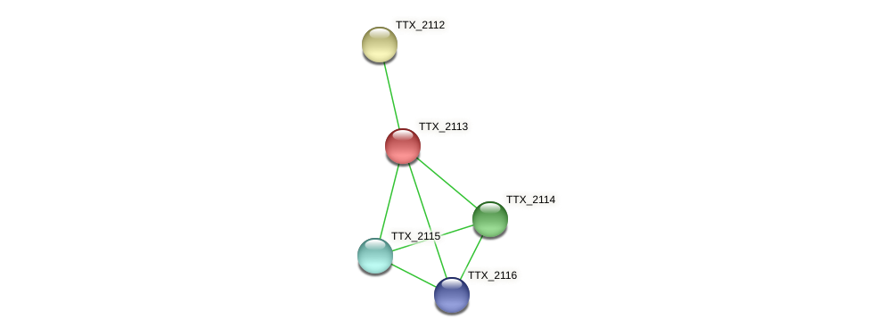 TTX_2113 protein (Thermoproteus tenax) - STRING interaction network