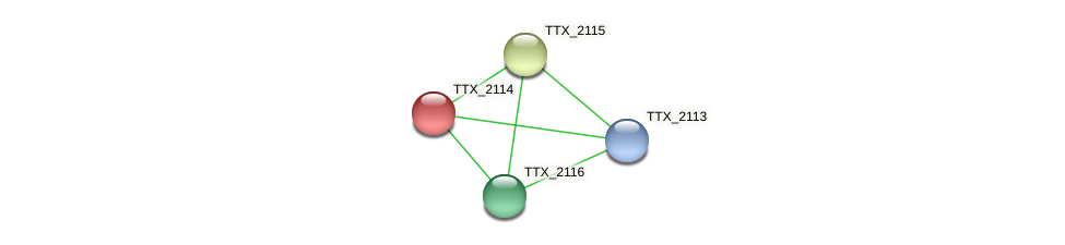 TTX_2114 protein (Thermoproteus tenax) - STRING interaction network