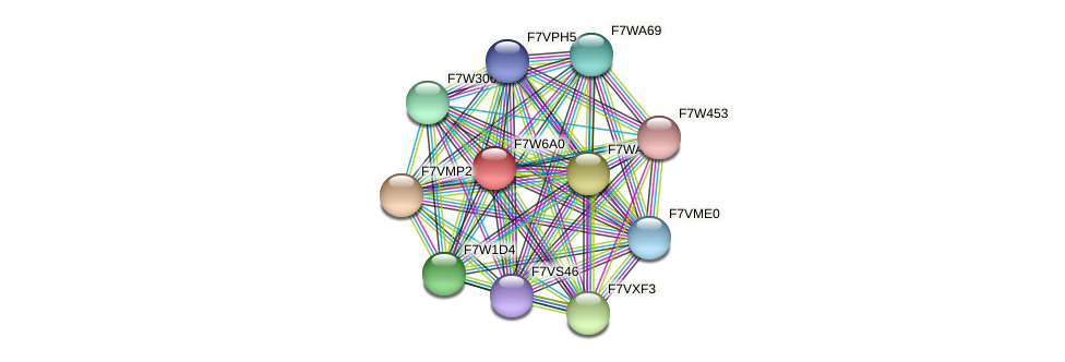 SMAC_06181 protein (Sordaria macrospora) - STRING interaction network