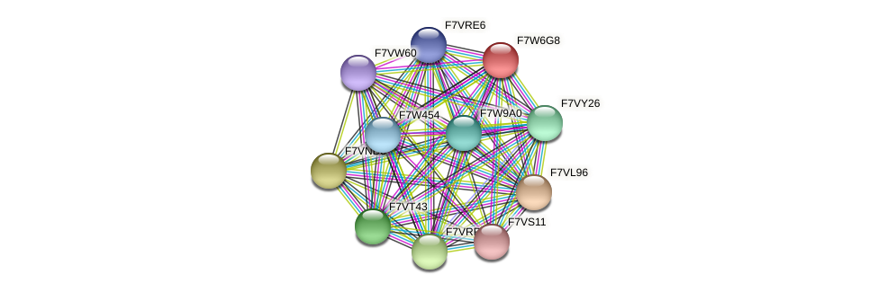 SMAC_06325 protein (Sordaria macrospora) - STRING interaction network