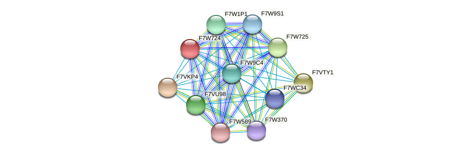 SMAC_06603 protein (Sordaria macrospora) - STRING interaction network