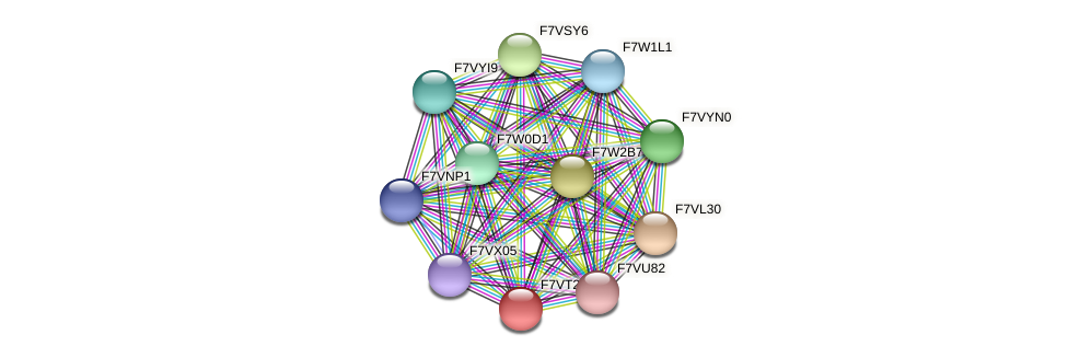 SMAC_05729 protein (Sordaria macrospora) - STRING interaction network