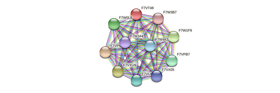 SMAC_05748 protein (Sordaria macrospora) - STRING interaction network