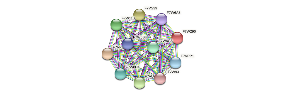 SMAC_04722 protein (Sordaria macrospora) - STRING interaction network