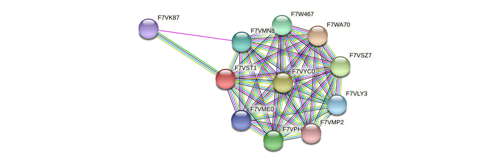 SMAC_05388 protein (Sordaria macrospora) - STRING interaction network