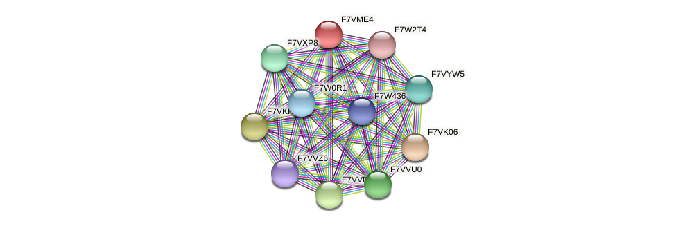 SMAC_01149 protein (Sordaria macrospora) - STRING interaction network