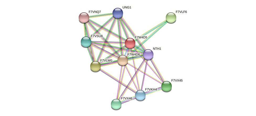 SMAC_07714 protein (Sordaria macrospora) - STRING interaction network