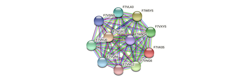 SMAC_00048 protein (Sordaria macrospora) - STRING interaction network