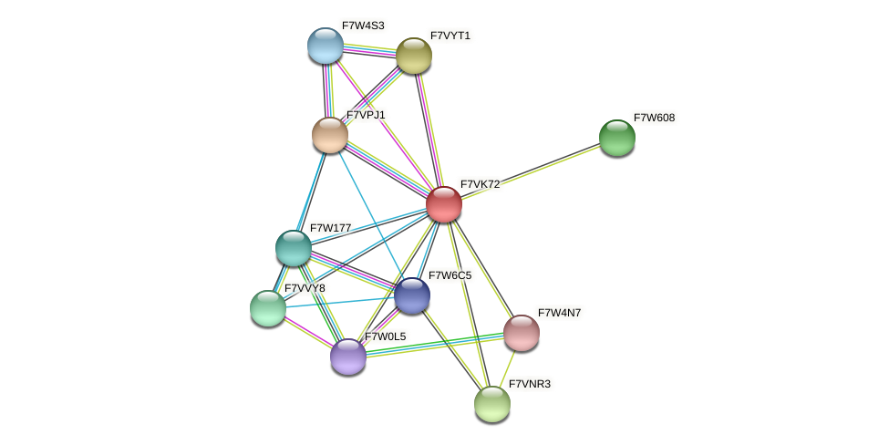 SMAC_00114 protein (Sordaria macrospora) - STRING interaction network