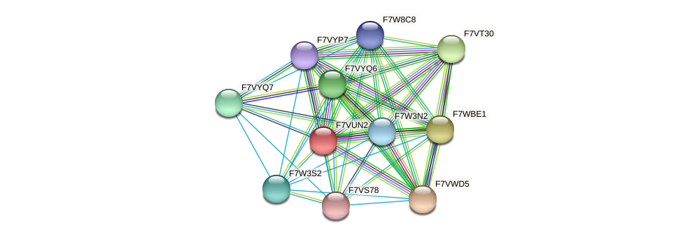 SMAC_04987 protein (Sordaria macrospora) - STRING interaction network