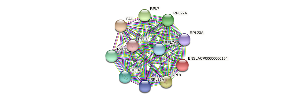 ENSLACG00000000137 protein (Latimeria chalumnae) - STRING interaction network