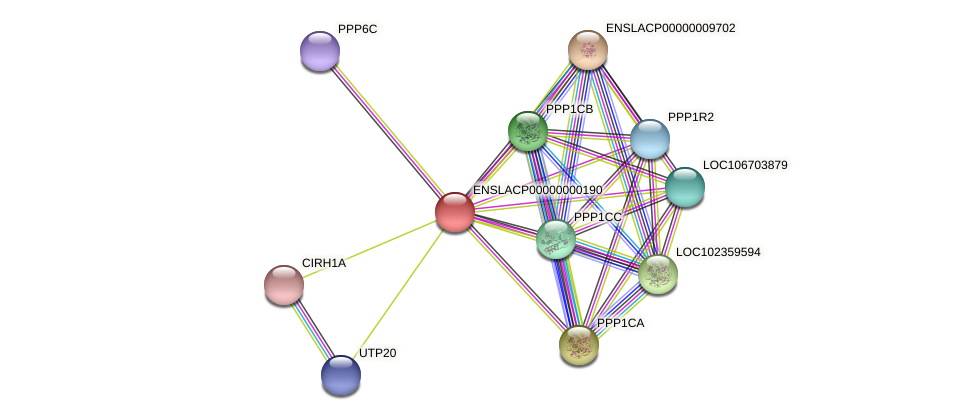 PPP1R11 protein (Latimeria chalumnae) - STRING interaction network