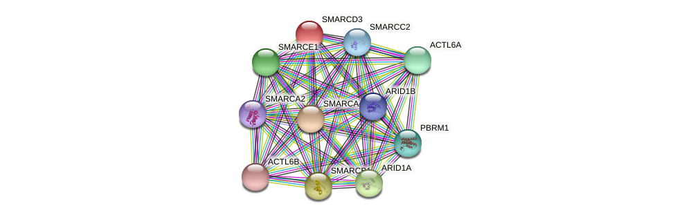 SMARCD3 protein (Latimeria chalumnae) - STRING interaction network