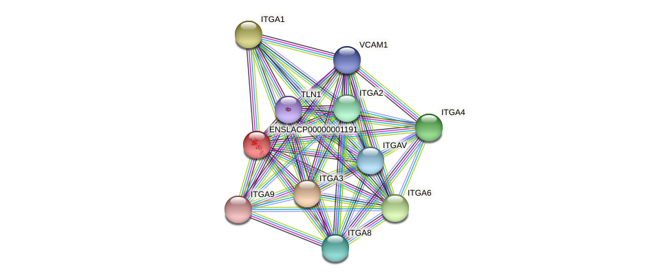 ENSLACG00000001067 protein (Latimeria chalumnae) - STRING interaction network