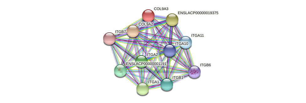 ENSLACG00000001118 protein (Latimeria chalumnae) - STRING interaction network