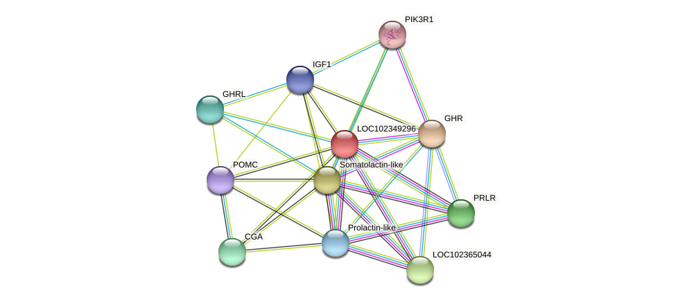 ENSLACG00000001190 protein (Latimeria chalumnae) - STRING interaction network