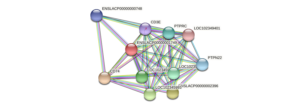 ENSLACG00000001562 protein (Latimeria chalumnae) - STRING interaction network