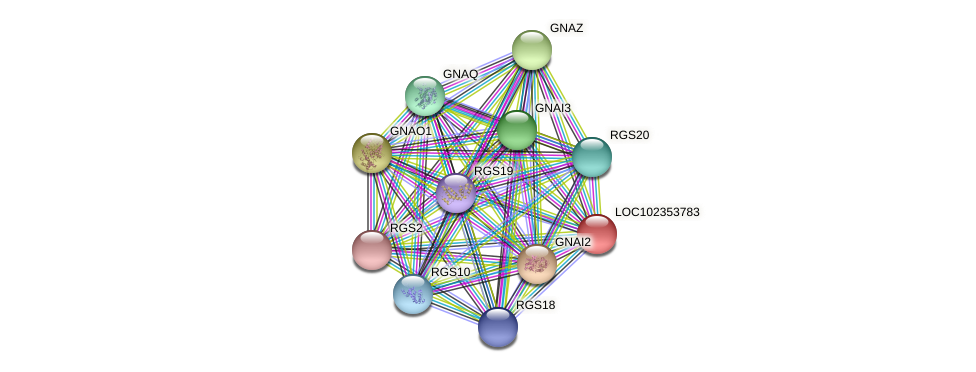 ENSLACG00000001573 protein (Latimeria chalumnae) - STRING interaction network